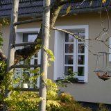 Eine Leiter wird von Blätter umrankt im Hintergrund ist die Ferienwohnung zu sehen