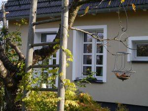 Eine Leiter wird von Blätter umrankt im Hintergrund ist die romantische Ferienwohnung zu sehen