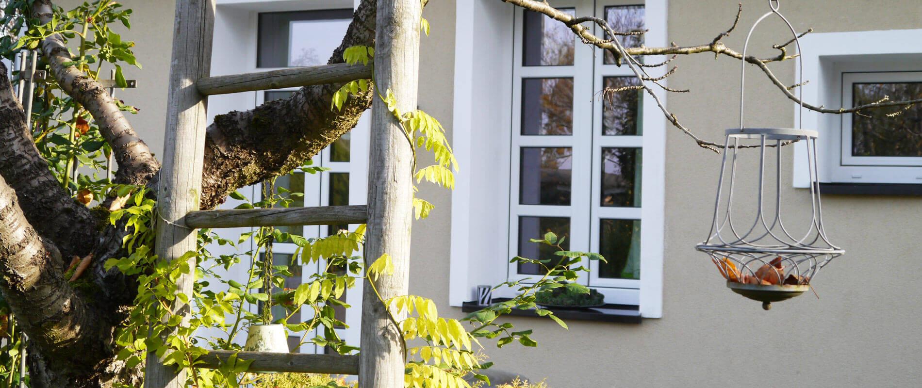 Eine alter Leiter an einen Baum gelehnt und von Blättern umrankt