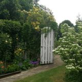 viele Blumen und Gartentor